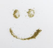 4 impulses nicola scholz münchen